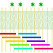 Variation in length of alpha waves reveals ...