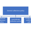 General Collections Policy of the Finnish ...